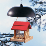7 Top-Rated Bird Feeder Squirrel Baffles