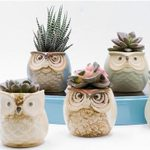 20 Unique Owl Gifts We Can't Resist