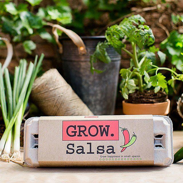 salsa grow kit