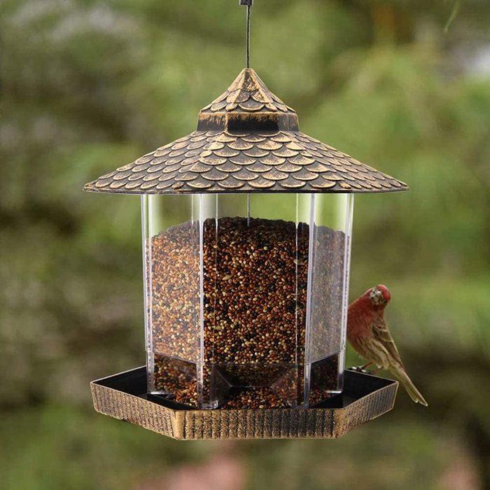 twinkle star best bird feeder
