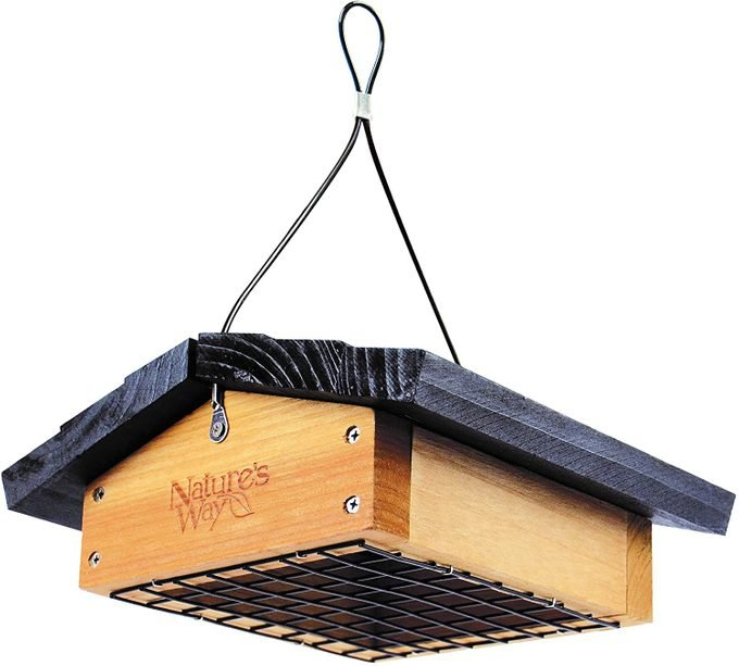 starling proof suet feeder