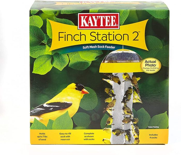 finch feeder station