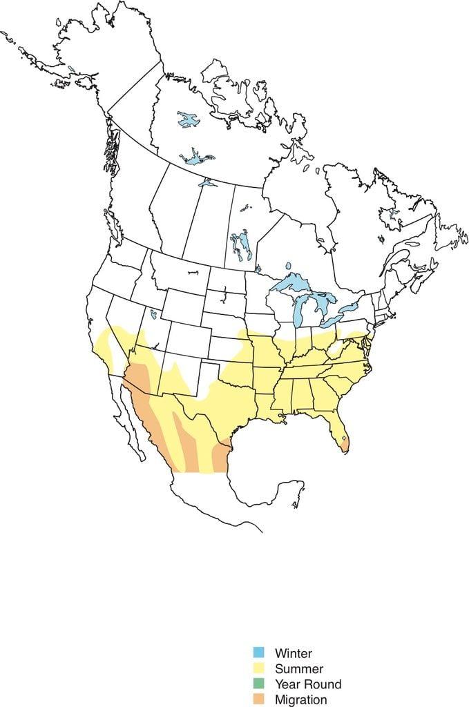 Summer Tanager range Map