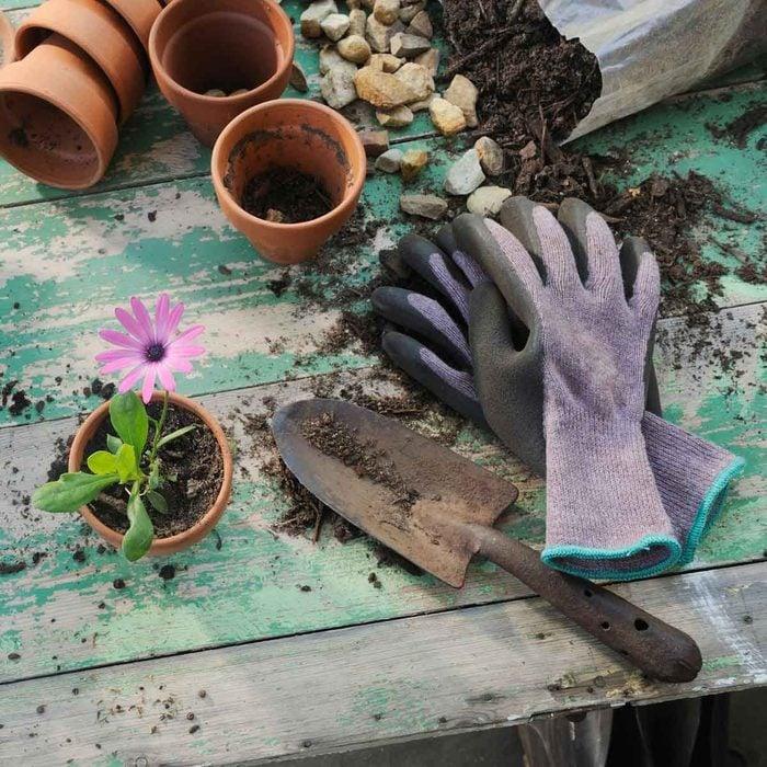 Garden Gear Gettyimages 105180542