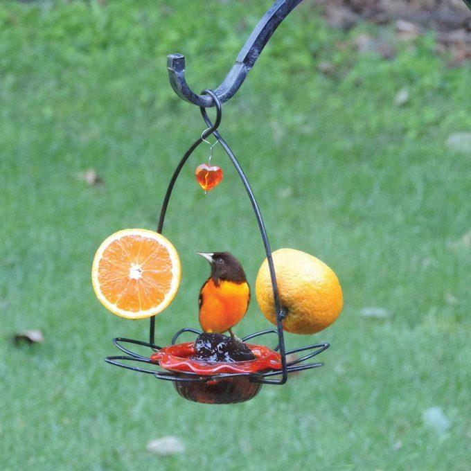 flower oriole feeder