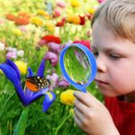 The Best STEM Toys, Science Kits, and Nature Games for Kids