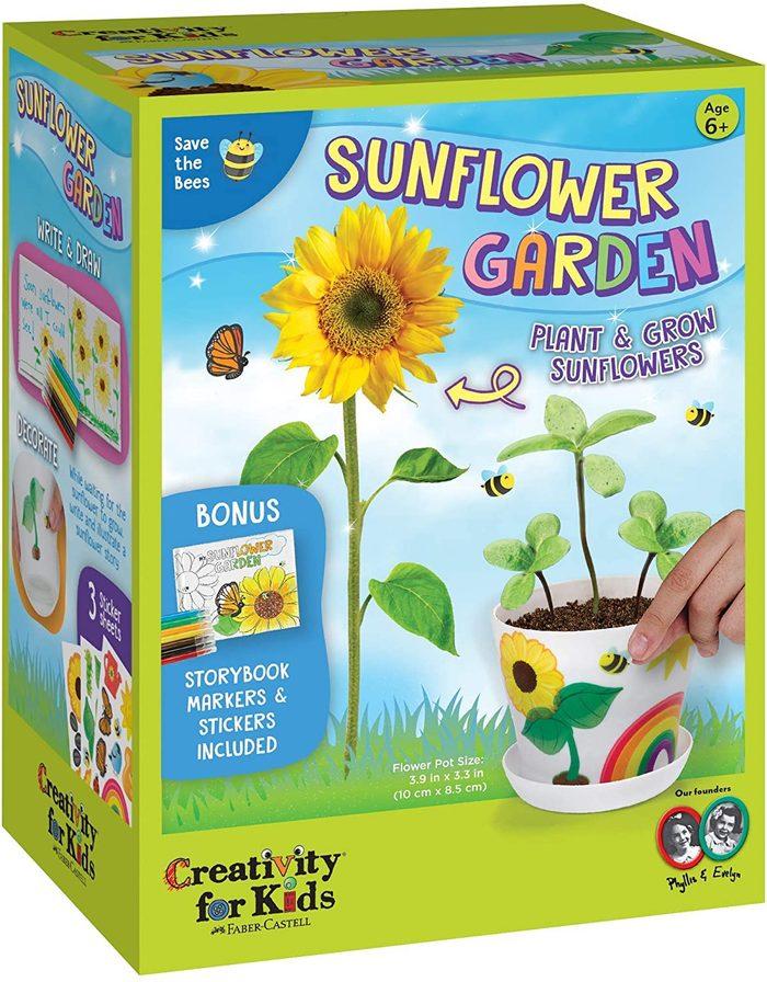 sunflower garden kit