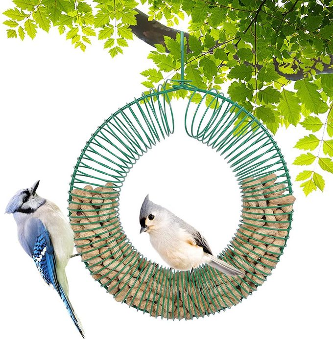 peanut wreath blue jay feeder