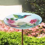 15 Best Birdbaths and Fountains for Attracting Birds