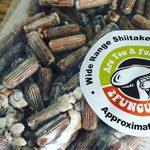 I Tried Growing a Mushroom Kit for the Freshest Shiitake
