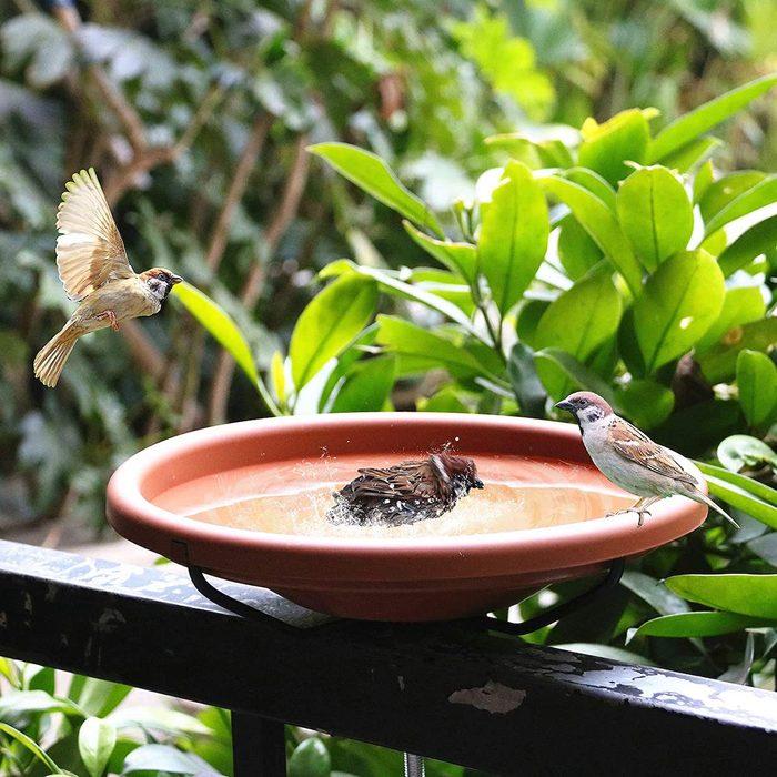deck mounted birdbath