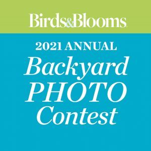 Photocontest2021