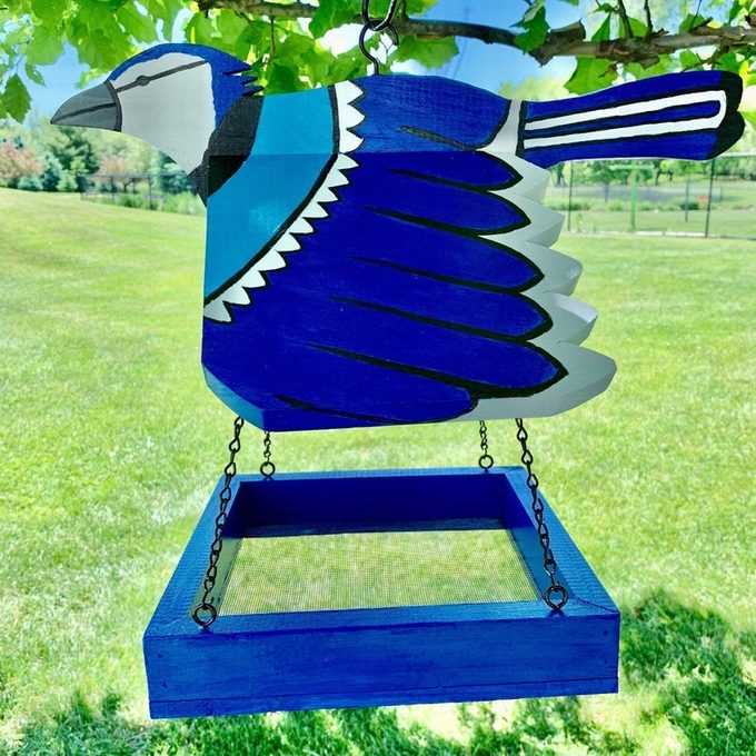 blue jay tray feeder