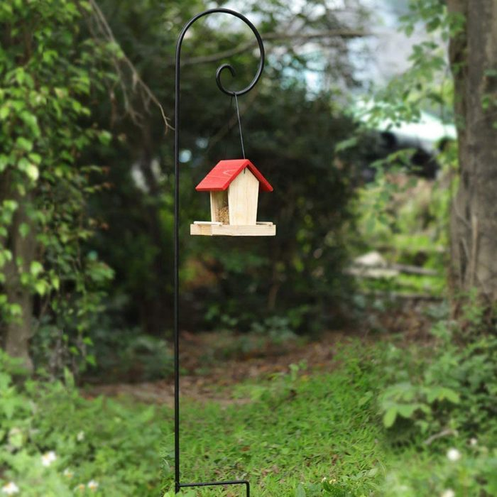 Bird Feeder Pole 610ybdqaw2l  Ac Sl1000