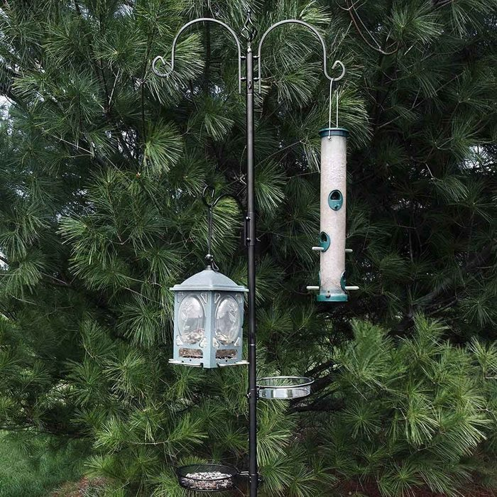 Bird Feeder Pole 91ywtajyzpl  Ac Sl1500