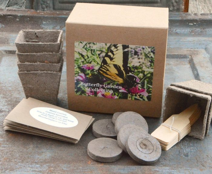 butterfly garden kit, gifts for plant lovers