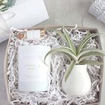 22 Perfect Gifts for Plant Lovers