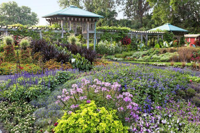 The Garden of Innovations at the Montreal Botanical Garden is packed with vivid flowers.