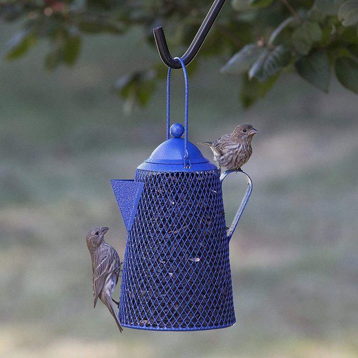 coffee pot bird feeder