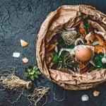 Composting Basics: How to Make Compost