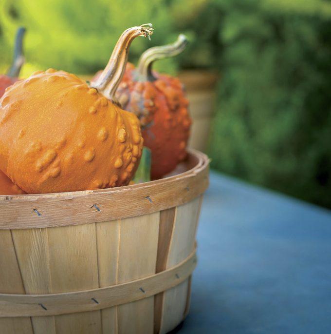 Toad pumpkins