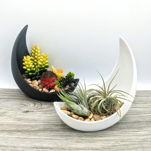 11 Mini Planters to Suit Any Decorating Style
